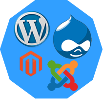 CMS (WordPress & Drupal)